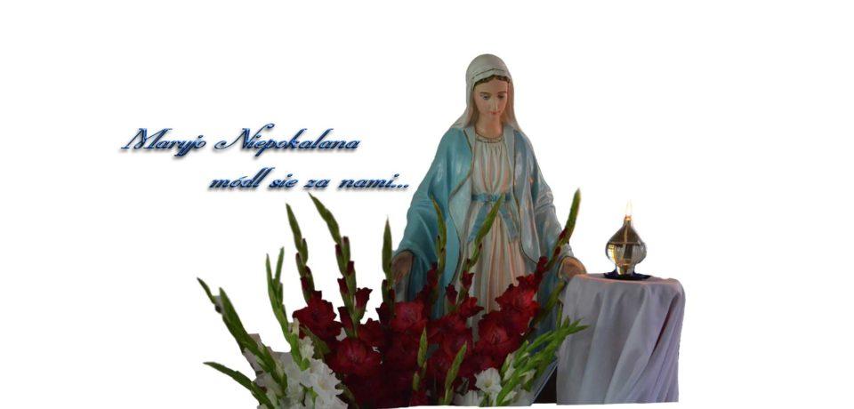 Maryjo Niepokalana